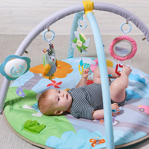 Musical Nature Baby Gym Taf Toys