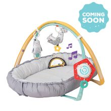 Musical newborn nest & gym